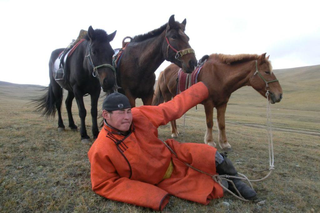 """Boinaa und """"unsere"""" Pferde"""